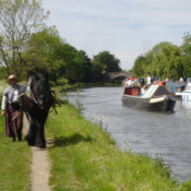 Horseboating to Liverpool
