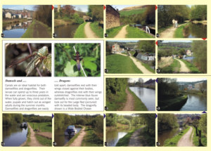 Towpath Guide